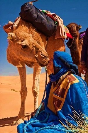 camel ride in the desert