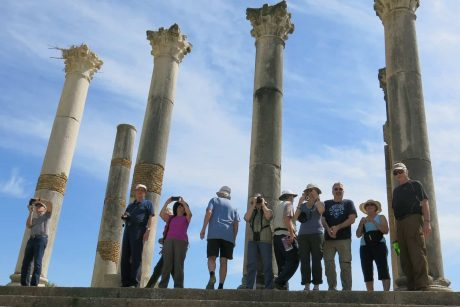 Full-day Volubilis & Meknes Tour